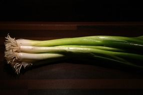 stalk of winter onion leek