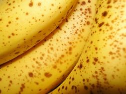 yellow bananas close up