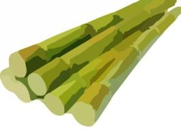painted sugarcane