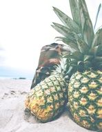 pineapples on a beach