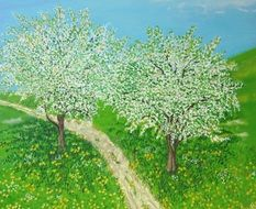 fruit trees avenue drawing