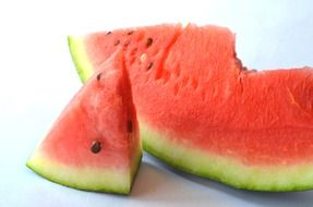 fresh watermelon slice
