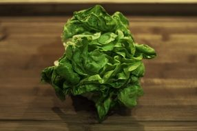 incredibly tasty lettuce vegetable