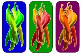 collage with chili peppers