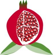 Juicy seeds of pomegranate clipart