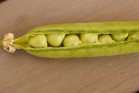 green pea in a pod