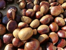 Chestnuts in the market