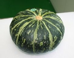 green sweet pumpkin