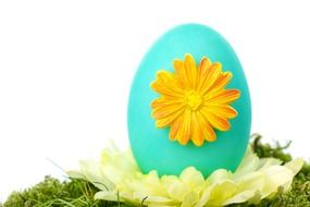 decorated egg on a flower