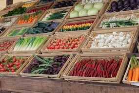 fresh colorful vegetables in showcase on market