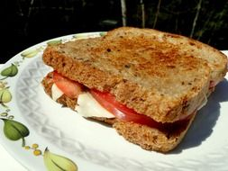 delicious toast with cheese and tomatoes