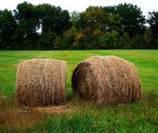 round bales on a rural field