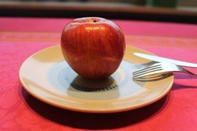 apple fruit on a plate