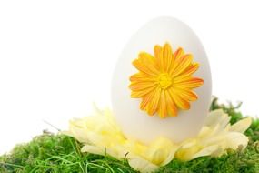 white and yellow color decorative eggs for easter celebration