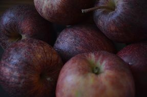 dark red apples close up