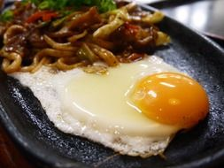 egg with udon noodles