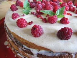 sponge cake with fresh raspberry