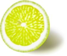 half lemon on white background