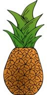 Exotic fresh pineapple clipart