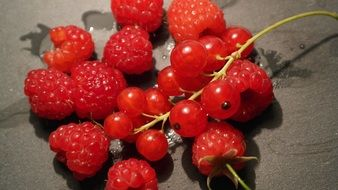 currants and raspberries and berries food