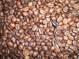A lot of Brown coffee beans