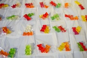 packed gold bears red yellow green white