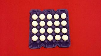white eggs in a tray on a red background