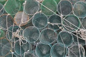 nets for catching fish