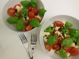 fresh salad with tomatoes and mozzarella in two plates
