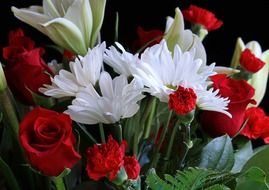 Photo of white daisys and red roses