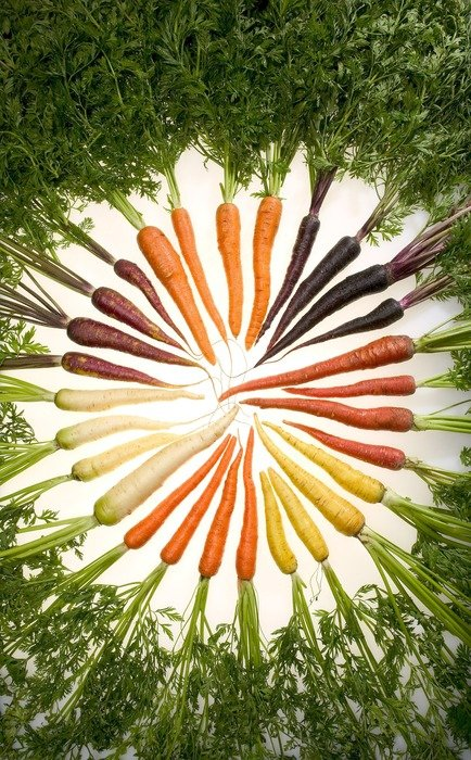 carrots of different varieties
