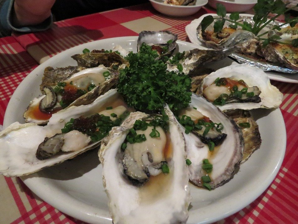 oysters on plate, japanese cuisine