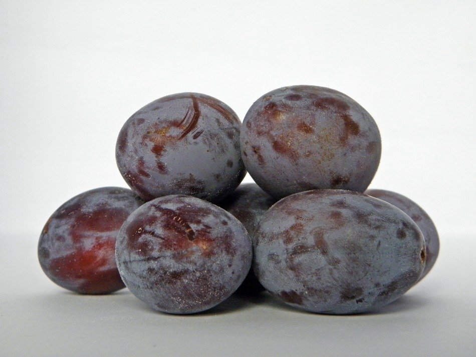 pile of ripe plums close up