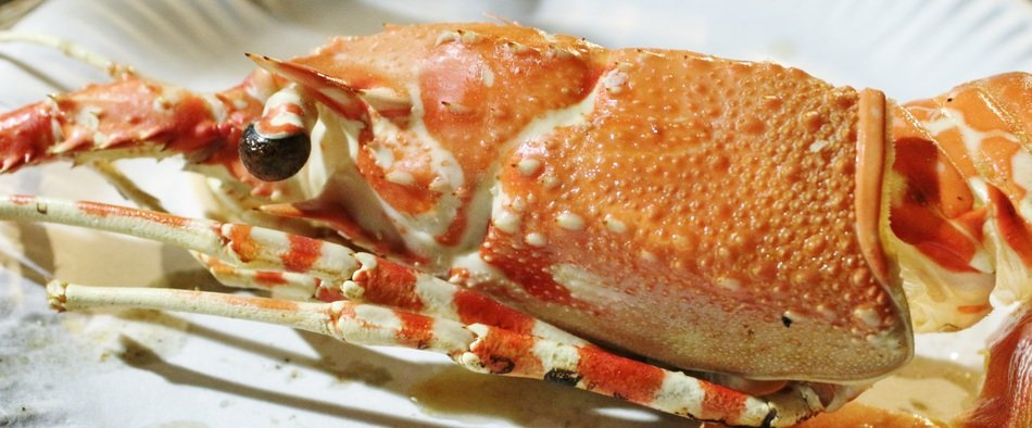 crabs as food for vibrant gourmets