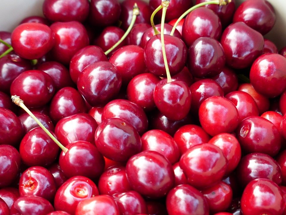 sweet delicious red cherry fruit