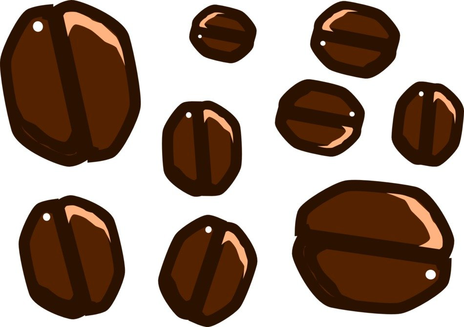 graphic image of different coffee beans