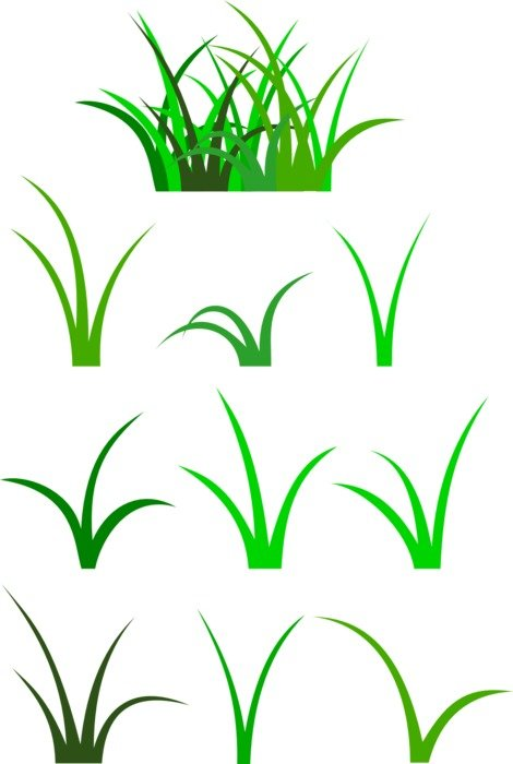 graphic image of different green grass