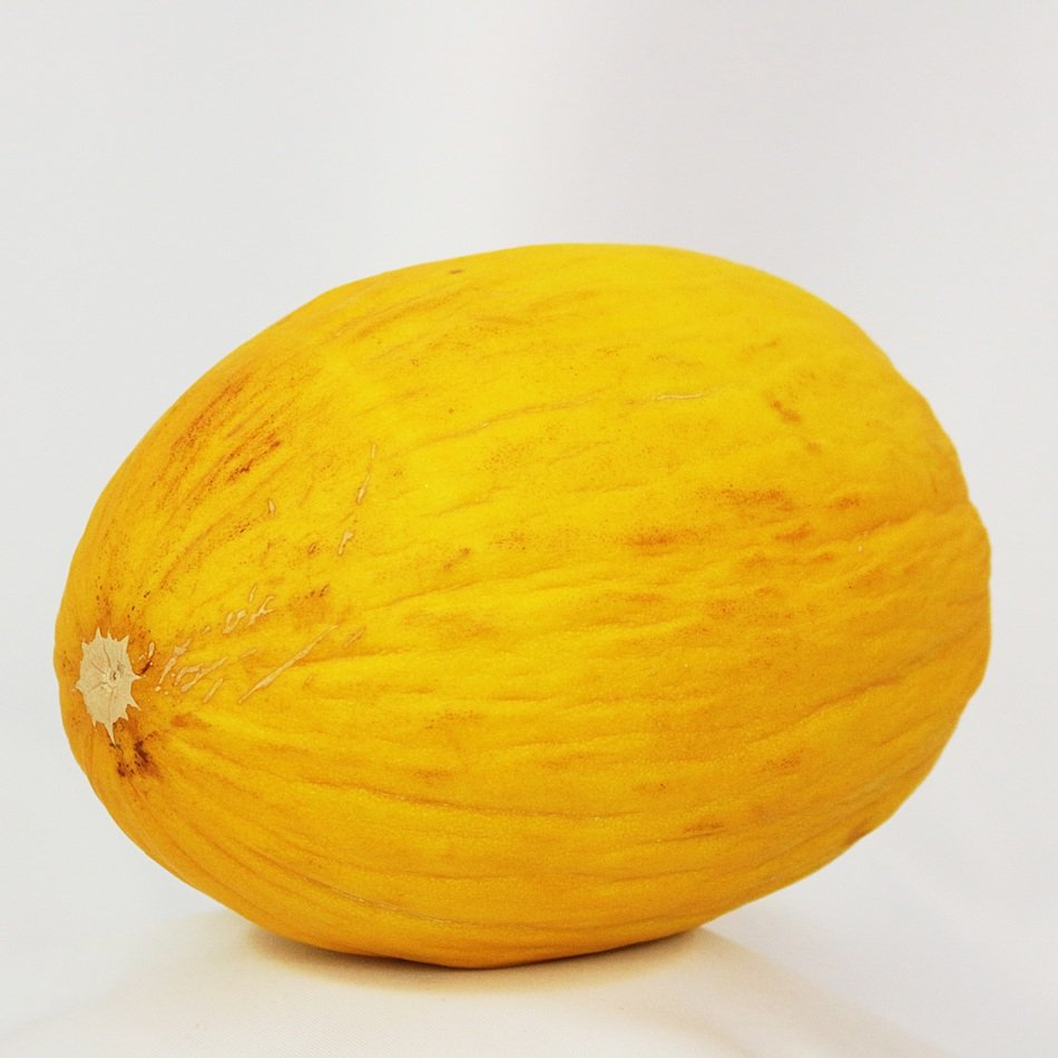 Yellow melon on the white table