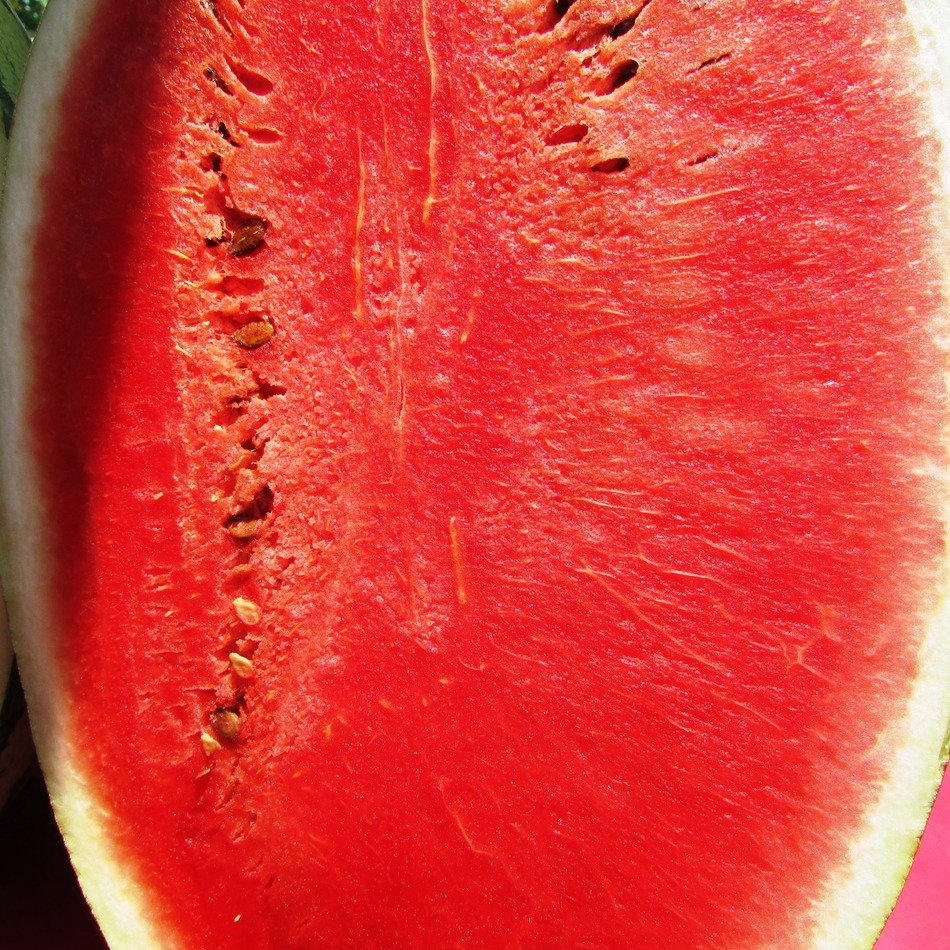 red summer juicy watermelon