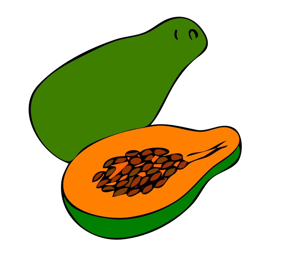 Picture of green open papaya