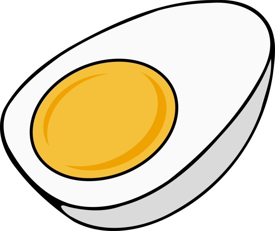 half of hard boiled egg, illustration