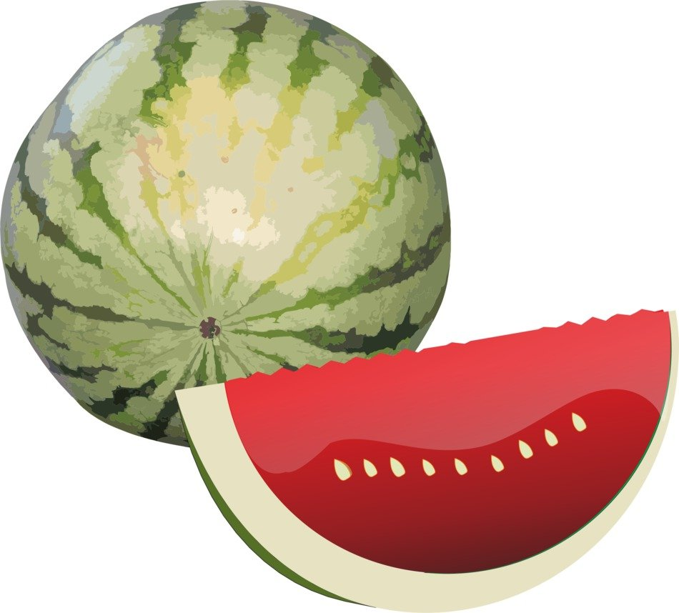 Clipart of watermelon