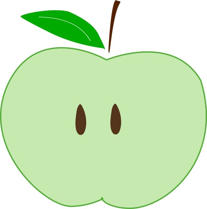 green apple slice as a drawing