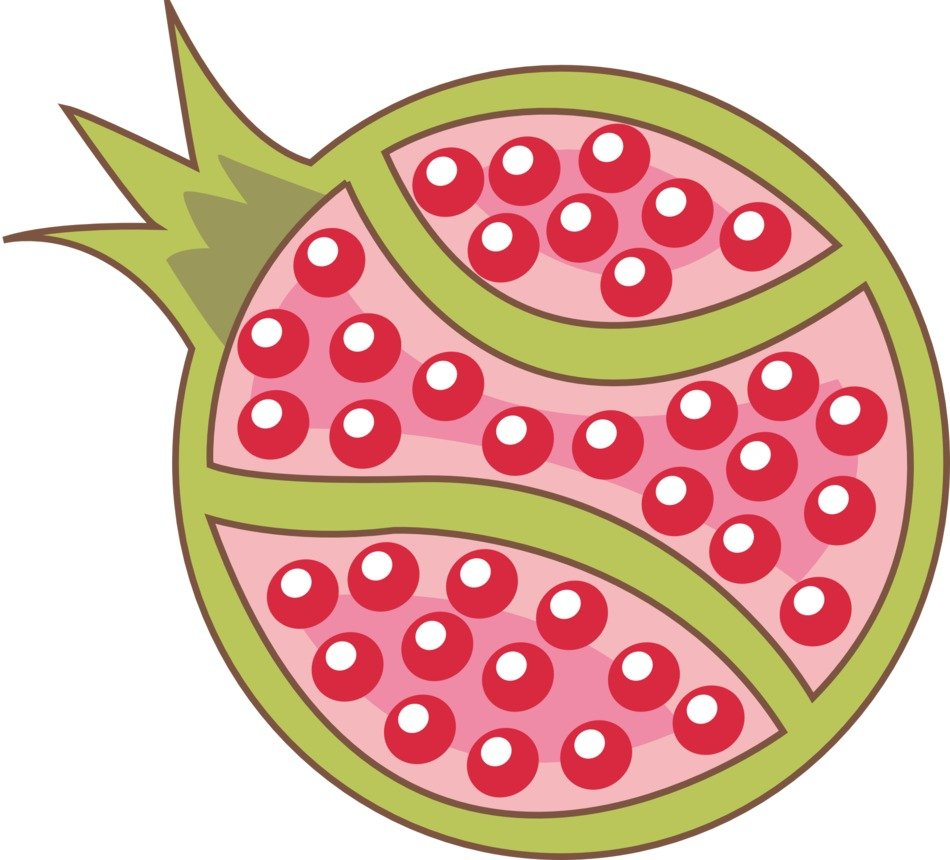 drawing of cut pomegranate with seeds