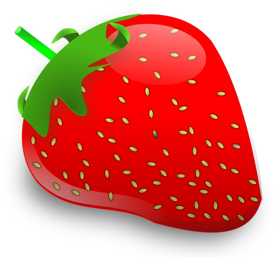 strawberry fruit berry drawing