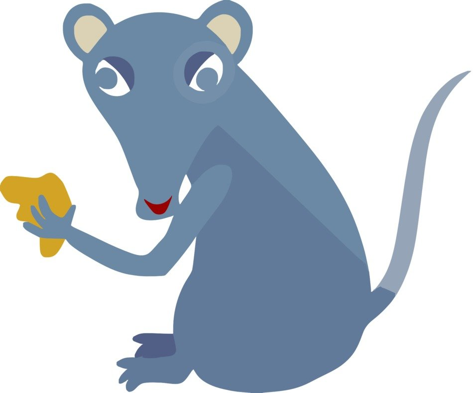 Blue mouse rodent eating cheese on the drawing