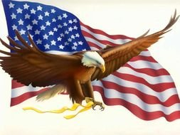 American Flag and Eagle, drawing