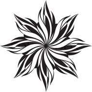 Black And White Cool Design Flower Pattern