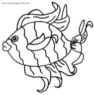 Tropical Fish Coloring Pages N4