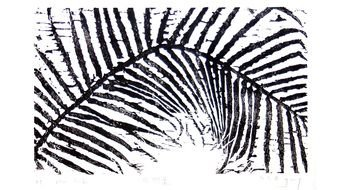 painted black and white palm leaf